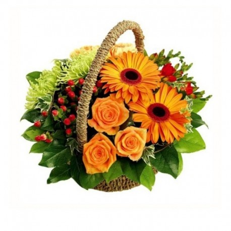 Medium Gerberas and Mix Basket